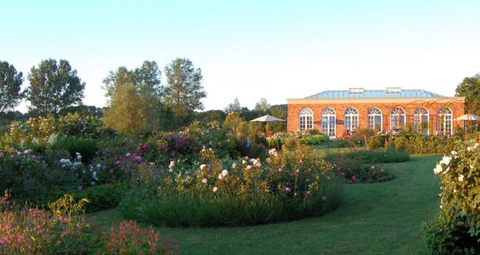 Rosenpark Groß Siemen