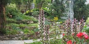 Sabines Garten