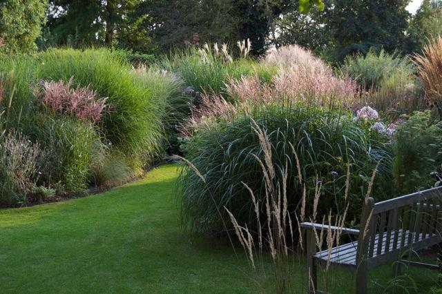 privatgarten gräsermeer | parks und gärten, Gartenarbeit ideen