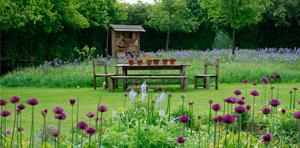 Gartencafé Sonntagsgrün