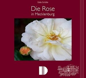 die Rose von Mecklenburg, von Edda Schütte (Buch)